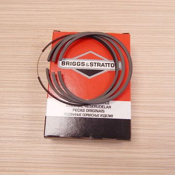 Set segmenti BRIGGS & STRATTON - 499996