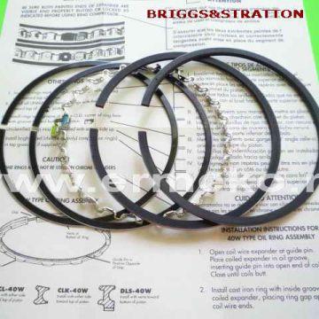 Set segmenti BRIGGS & STRATTON