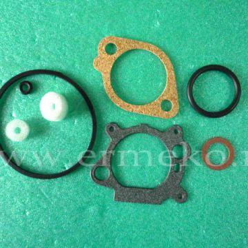 Set garnituri carburator - BRIGGS & STRATTON - ER5401293