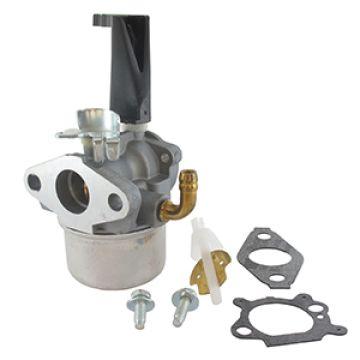 Carburator motor BRIGGS & STRATTON 798653/ER5208225 - ER5208225